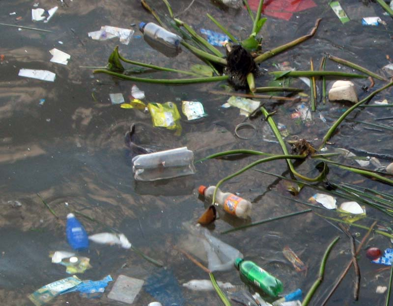 29_eau-sale-dechets-ecologie.jpg