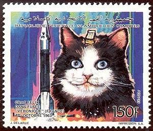 «J'avais commencé une collection de timbre, mais j'ai vite arrêté.. trop mal aux doigts»